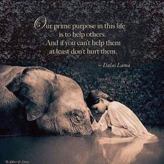help others...............
