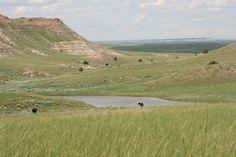 Montana range
