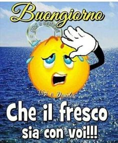 Buongiorno May the coolness be with you! Smileys, Mafalda Quotes, Jokes Quotes, Say Hello, Winnie The Pooh, Good Morning, Disney Characters, Fictional Characters, Emoticon