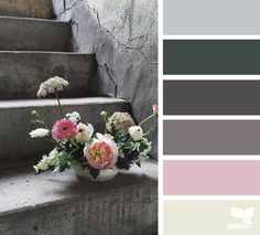 Color palette { flora hues } by Paint Color Schemes, Colour Pallette, Color Combos, Color Balance, Color Harmony, Paleta Pantone, Design Seeds, Color Theory, Color Patterns