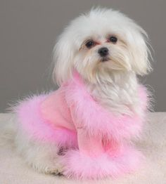 pink dog sweater ☀opawz.com   supply pet hair dye,pet hair chalk,pet perfume,pet shampoo,spa....