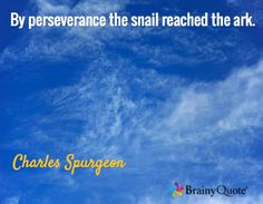 By perseverance the snail reached the ark. / Charles Spurgeon