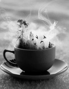 Tea Cup, mug, black and white, tree, moon,Crow, spooky, sad, scary, | via Facebook