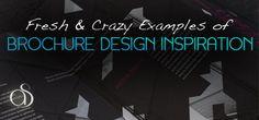 40+ Fresh Examples of Creative & Crazy Print Brochure Design Inspiration