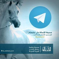 تابعوا صحيفة الأصالة على telegram@  #تيليغرام    https://telegram.me/alassalah