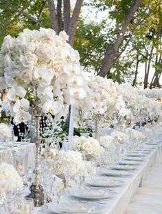 Garten Party Ist Nur In Weiß Gelöst Orchideen Als Tischdeko