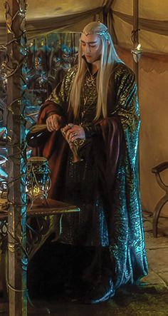 """""""You made it here with no trouble?"""" King Thranduil asked. I nodded and replied, """"yes, sir."""" I winced and rubbed my rear end. I was sore from riding without stopping for several hours. """"Would you like some wine?"""" He inquired. """"I will have some..."""" I answered. He poured a generous amount into a wooden goblet then handed it to me. I took a large gulp of the strong, tangy, but sweet liquid that warmed my whole body, and seemed to replenish my strength."""