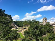 Exploring the Mayan ruins in Palenque  definitely one of the coolest trips of Mexico life #ruins#palenque#chiapas#mexico##travel#neverstopexploring#theculturetrip#seetheworld#folktravel#wanderlust#natgeotravelstories#culturetrippers#planetearth#earthpic#52places#makemoments#igers#instagrammers#dailyinsta#dailyinspiration#photography#photooftheday#dailyig#wolderlust#bestcommunitytravel