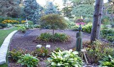 http://www.finegardening.com/japanese-garden-project