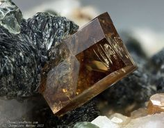 Anatase Griesferner glacier, Vizze Valley (Pfitsch Valley), Bolzano Province (South Tyrol), Trentino-Alto Adige, Italy 1.3 mm brown-yellow Anatase crystal. Collection & Photo Matteo Chinellato