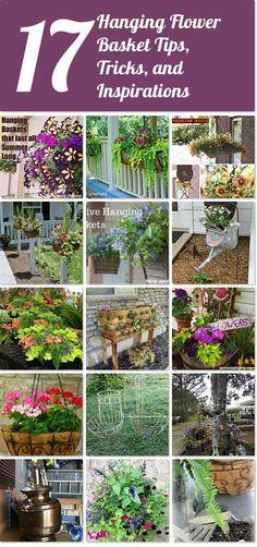 17 hanging flower basket tips, tricks, and inspirations | Hometalk