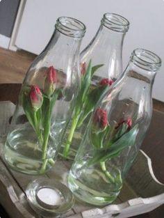 Melkflessen gevuld met tulpenstengels.