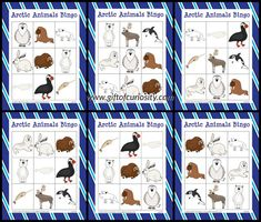 What a great resource for helping preschoolers, kindergartners, and other young kids learn the names of common Arctic animals! Animal Activities, Animal Games, Preschool Activities, Bingo, Artic Animals, Nocturnal Animals, Arctic Habitat, Animals That Hibernate, Winter Art Projects