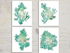 Turquoise Teal Wall Art, Seaweed Prints Teal Seaweed Prints, Turquoise Home Decor Seaweed Illustrations, Coral, Seaweed Print Set, Teal Mint on Etsy, $24.99