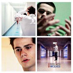 Teen Wolf ~ Stiles Stilinski - The boy who runs with wolves Teen Wolf Boys, Teen Wolf Dylan, Teen Wolf Stiles, Teen Wolf Cast, Sterek, Stydia, Malia Tate, Scott Mccall, Lydia Martin