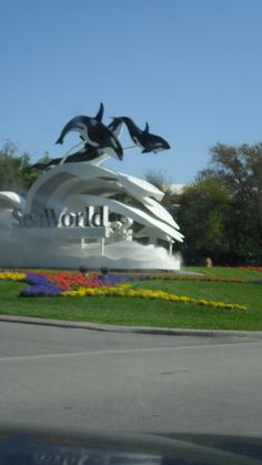 Sea World 2011