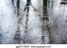 """""""Reflection of trees in rain puddles"""" - Rain Stock Photo from Go Graph"""