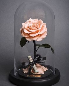 Beauty and the beast enchanted roses from forever rose Flower Boxes, My Flower, Jewel Candle, Forever Rose, Preserved Roses, Enchanted Rose, How To Preserve Flowers, Glass Domes, Beautiful Roses