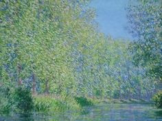 Analogous Colour- Monet