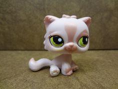 #1083 Persian Cat 2006