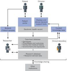 The precision medicine ecosystem