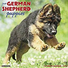 german shepherd calendars 2018
