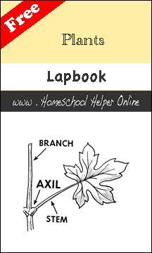 Homeschool Helper Online's Plants Lapbook