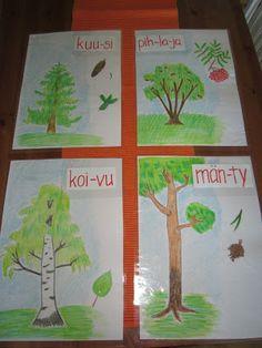 Open ideat: Pihapuut-opintokokonaisuus, alkuopetus.