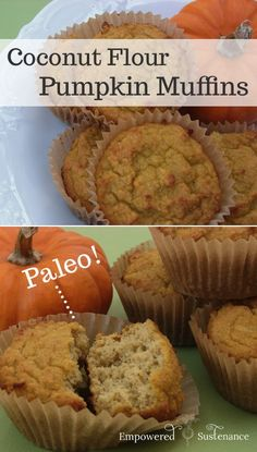 A recipe for paleo Coconut Flour Pumpkin Muffins. Only 10 minutes of prep required! A recipe for paleo Coconut Flour Pumpkin Muffins. Only 10 minutes of prep required! Paleo Recipes, Low Carb Recipes, Whole Food Recipes, Paleo Pumpkin Recipes, Coconut Flour Recipes Low Carb, Free Recipes, Paleo Dessert, Healthy Desserts, Kolaci I Torte