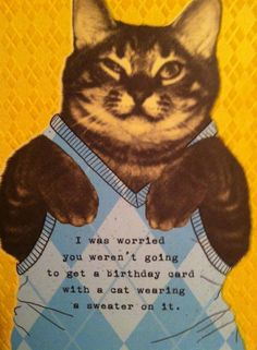 cat card, with sweater