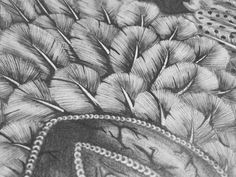 Pencil Feather Mask Composition at an angle