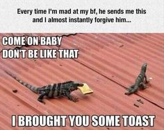 Hahaha, awwww, so cute.  How could you NOT forgive him?!!  Toast (with coconut oil spread and just the right amount of Vegemite!!) would do it for me too - or a new potplant lol.  <3 this.