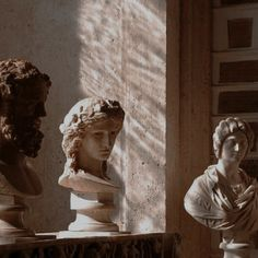 gorgeous light and shadow on antique statues. Brown Aesthetic, Autumn Aesthetic Tumblr, Athena Aesthetic, Aesthetic Statue, Art Sculpture, Photography Classes, Photography School, Photography Jobs, London Photography