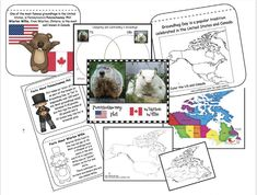 "Groundhog Day activities: Worksheets, booklet, posters, maps etc. are in this Groundhog Day packet, which includes information about how the US & Canada celebrate Groundhog Day. Fun comparing our ""Phil"" with their ""Will"". February Bulletin Boards, Groundhog Day Activities, Ground Hog, Writing Prompts, Booklet, Nonfiction, Worksheets, Fun Facts, Maps"