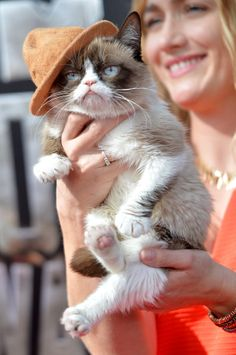 Grumpy Cat | All The Looks From The MTV Movie Awards Red Carpet