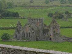 images of ireland   Hore Abbey, Cashel, Ireland