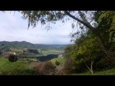 Scentsy New Zealand Trip Grace Adele, Living In New Zealand, New Zealand Travel, Countries Of The World, Scentsy, Fields, Road Trip, Country Roads, Meet