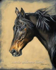 Gallery of General Horse Art! For more specific horse subjects, visit these galleries…