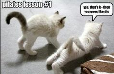 Funny Pilates lesson.