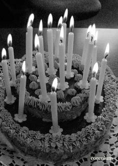 Podpořte můj blog, prosím.. :) tenhle dort jsem nafotila snad ze všech stran :D děkuji za něj babičko! :) :)