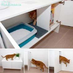 Hidden Cat Litter Box - I need dozens of these for my home selling clients!