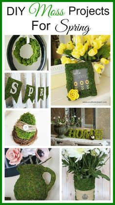 Easy spring decorating ideas! Moss is a great way to add a touch of spring and nature to your home. Lots of great DIY moss projects!
