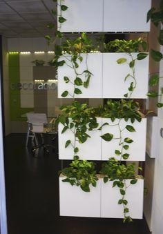 Cortina Vegetal Serastone. Separador de ambientes. Decoración Avanzada para Interiores. Para más info: http://www.serastone.com