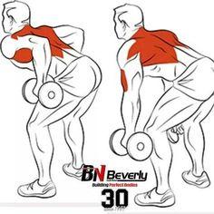 Best Bodybuilding Program: Back Exercises Ejercicios de Espalda