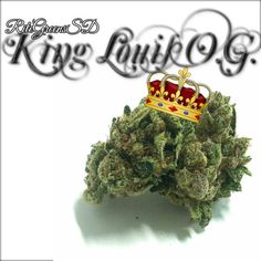 looking for a heavy OG to end your night with? Your search ends at RiteGreens with our King Louis O.G. This indica will target any pain, appetite loss or sleeplessness and make it no more! Call for yours before we close at 1AM (619)-753-5012 #Prop215 #patientsonly #notforsale #donate #619 #760 #858 #topshelflife #bombbomb #SD #sandiego #710 #420 #wfayo #trichomes #love #instamood #dank #highlife #THC #like4like #gogreen #medicate