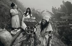 Sebastião Salgado visitou dez países em busca de plantações de café. O resultado está em exibição no Instituto Tomie Ohtake