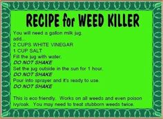 Image Result For Grsafe Weed Killer