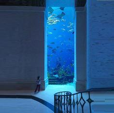 Dubai - Wow this is amazing!