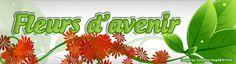 """Dernière démarque !    -10 % avec le code STVALENTIN sur tous les articles (même soldés)     Venez vous faire plaisir à petit prix sur www.fleursdavenir.com     Bon shopping !    Cordialement l'équipe de Fleurs d'avenir.    """"Fleurs d'avenir : Le Spécialiste du cadre végétal"""""""