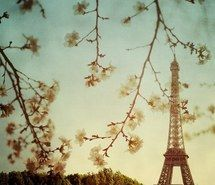 Dream, eiffel tower, flower, love, live